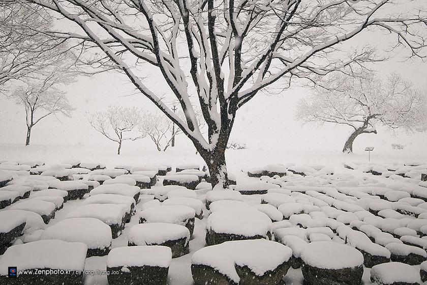 big_snowflakes.jpg